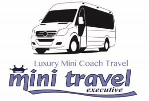 Mini Travel Executive